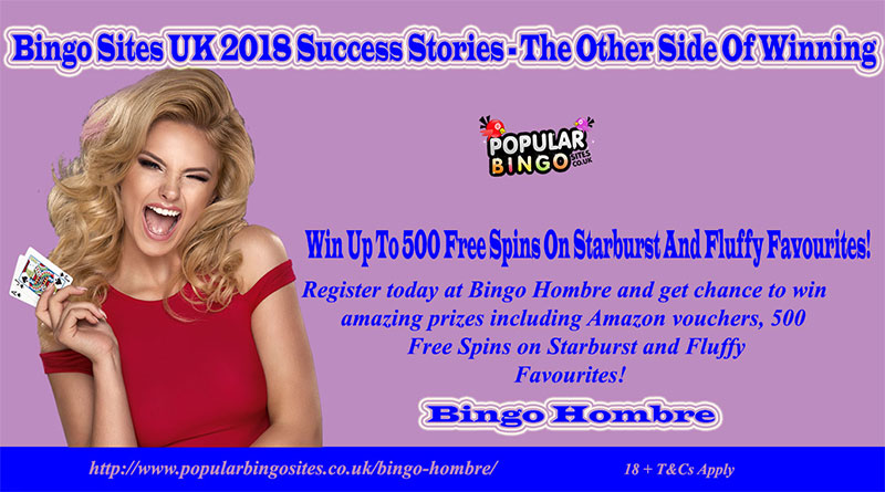 Bingo Sites UK 2018 Success Stories – The Other Side Of Winning